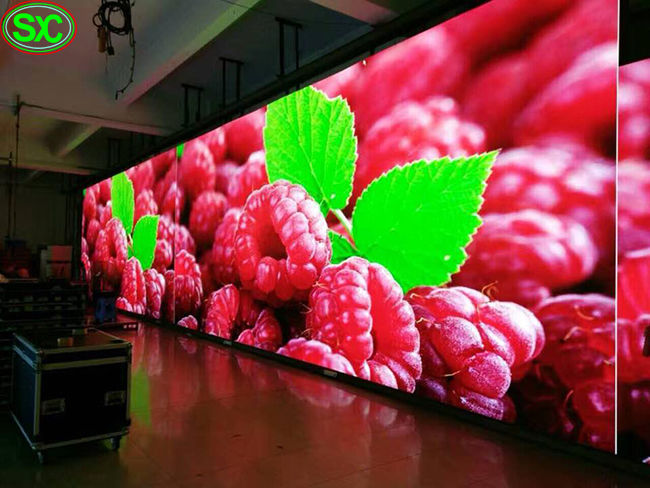 Indoor Full Color P4.81 Rental LED Screen Display 500x1000mm for Events
